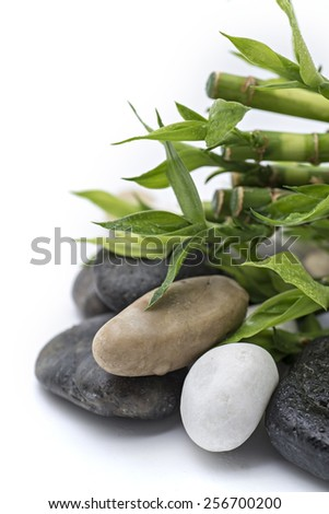 spa concept with zen stones and bamboo - stock photo