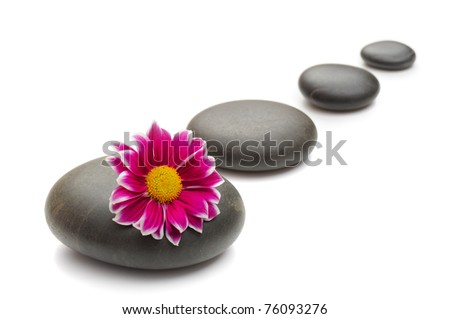 spa concept with zen stones and  daisy - stock photo