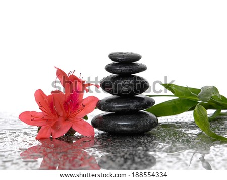 spa concept with zen stones and lily, bamboo - stock photo