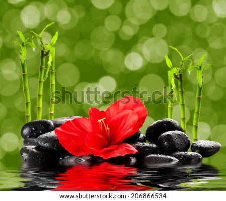 spa concept.  zen basalt stones - stock photo