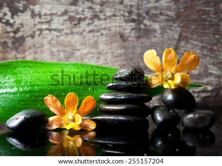 spa concept zen stones and orchid,wood background - stock photo