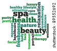 Spa, health and beauty info-text graphics and arrangement concept on white background (word clouds) - stock vector