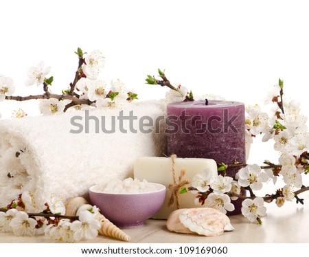 Spa isolated on white background - stock photo