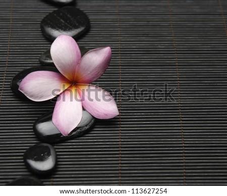 Spa life setting-frangipani with zen stones on mat - stock photo