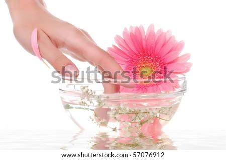 spa manicure - stock photo