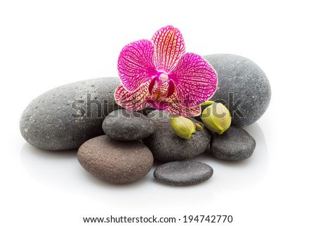 Spa massage stones and orchid isolated on the white background.