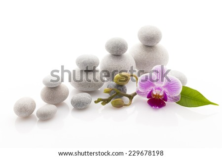 Spa massage stones with orchid. Studio photography.