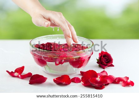 Spa Salon: Beautiful Female Hand with French Manicure in the Glass Bowl of Water with Red Roses and Rose Petals at the Nature Background - stock photo