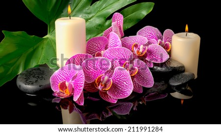 spa set of zen stones with drops, blooming twig stripped violet orchid (phalaenopsis), candles, big green leaf on water, closeup - stock photo