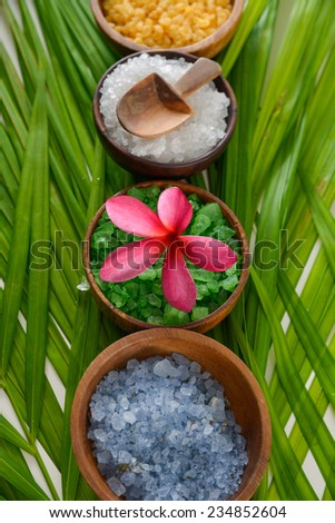 spa set with salt in bowl on green leaf - stock photo