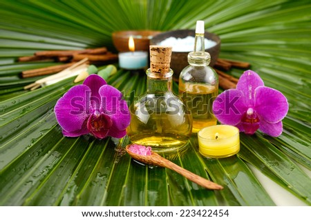Spa set with, spa oil , salt in bowl , orchid ,candle, on wet palm leaf - stock photo