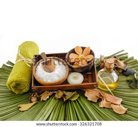 Spa setting and palm green  - stock photo