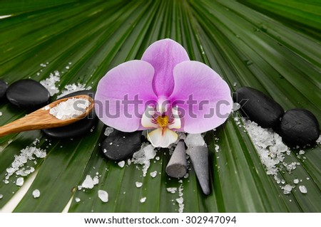 Spa setting and palm texture