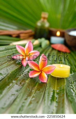Spa setting on palm leaf texture - stock photo