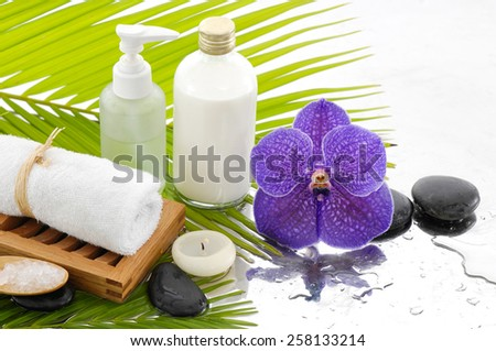 Spa setting on wet background - stock photo