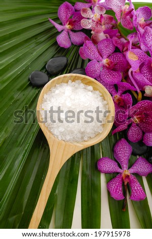 spa sitting with salt in spoon and pink orchid ,stone on palm leaf  - stock photo