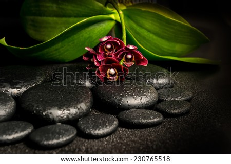 Spa still life of beautiful deep purple orchid flower, phalaenopsis and zen stones with drops on black  background - stock photo