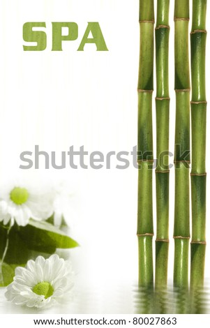 Spa still life with flowers and bamboo - stock photo