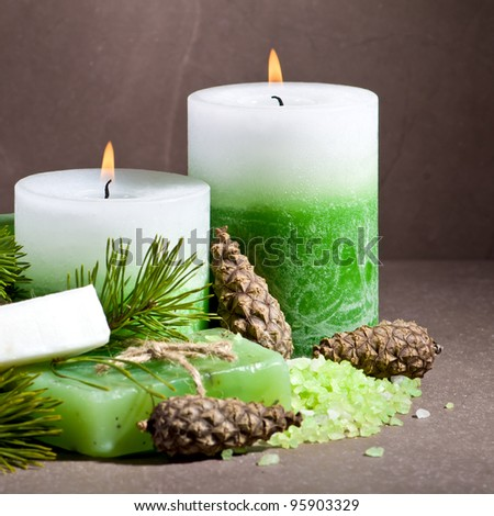 Spa still life with spruce twig and cones - stock photo