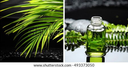 Spa Still life with stones and green palm oil, fern