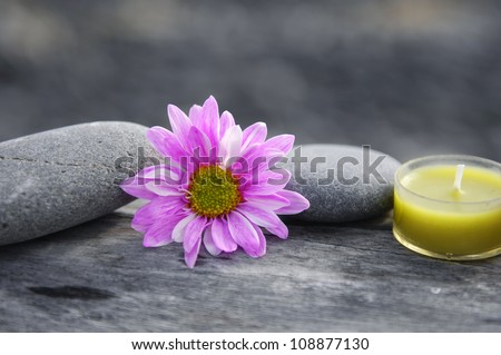Spa still life with stones with flower on driftwood background - stock photo