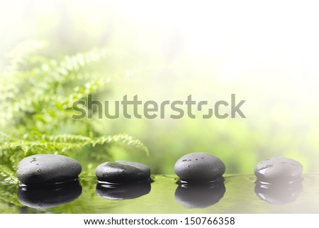 Spa still life with zen stone and grass - stock photo