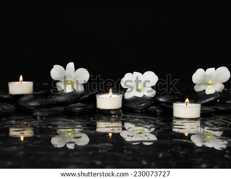Spa still with white orchid and candle on pebbles