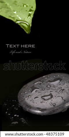 spa stone with water drop - stock photo