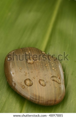 Spa Stone with Water Droplets on green background