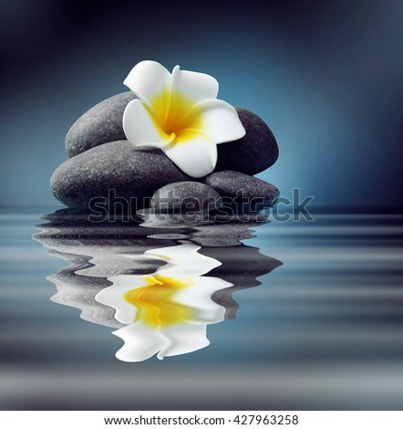 Spa stones and flower on water - stock photo