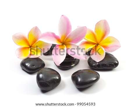 Spa stones and Frangipani flowers.