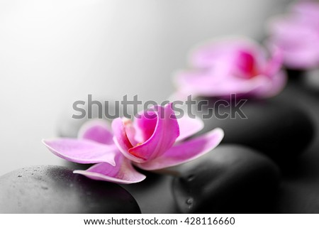 Spa stones and orchids, closeup - stock photo
