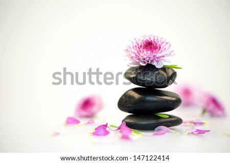 spa stones and pink flower isolated on white background (dof) - stock photo