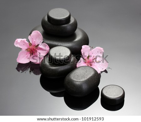 Spa stones and pink sakura flowers on grey background