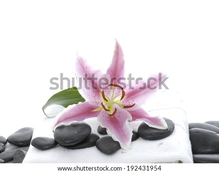 spa stones and towel with pink lily