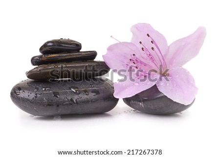 Spa stones and tropical flower, isolated on white