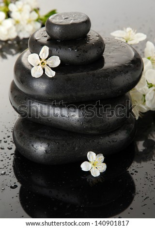 Spa stones and white flowers on dark background