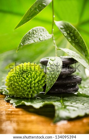 Spa stones on green leaves, flower, tropical spa harmony. - stock photo