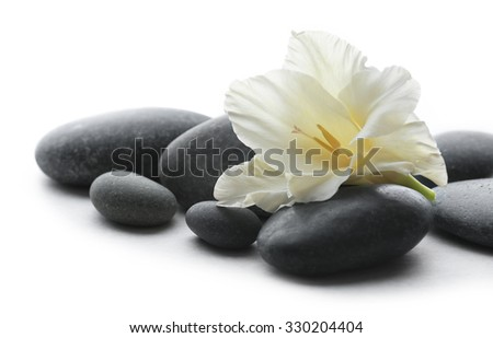Spa stones with flower on light background