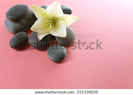 Spa stones with flower on pink background - stock photo
