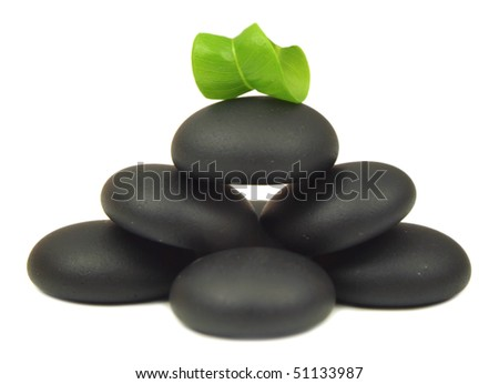 Spa stones with fresh green leaves isolated on white