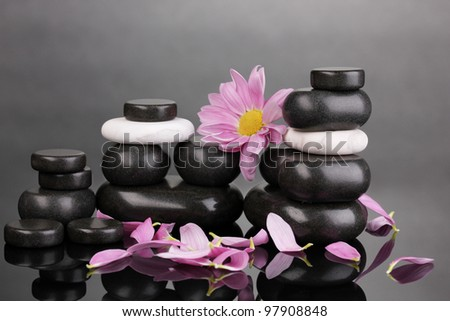 Spa stones with petals and flower on grey background