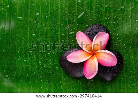 Spa theme objects with frangipani flower - stock photo