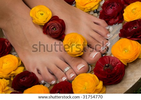 Spa treatment and pedicure with beautiful aromatic flowers - stock photo