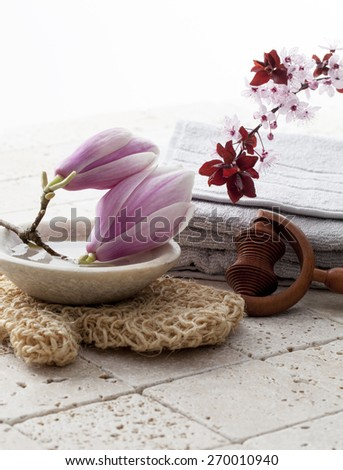 spa treatment symbols with Spring flowers - stock photo