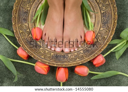 Spa treatment with beautiful elegant tulips - stock photo