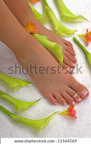 Spa treatment with beautiful lilies and freesia flowers - stock photo