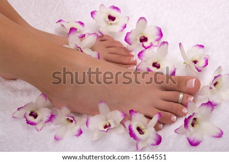 Spa treatment with beautiful orchids on soft cotton towel - stock photo