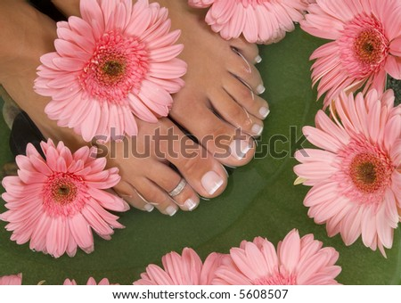Spa treatment with elegant pink gerberas - stock photo