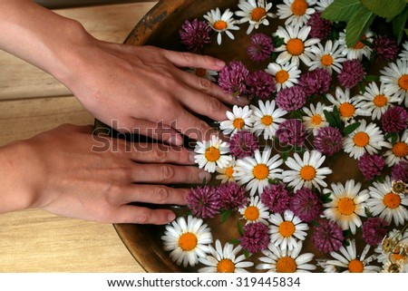Spa treatments chamomile grass hands